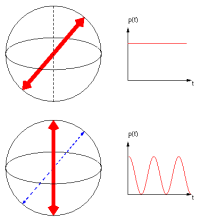 Depending on the   measurement base (red arrows), different dynamics of the excited   state is observed